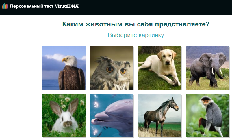 визуальный тест visualdna