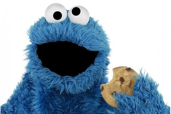 cookie monster.jpg